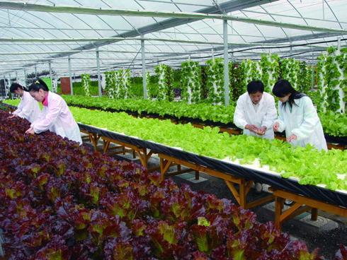 迈世努力促进智慧农业,实现新业态
